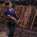 การทำถ่านไม้โกงกาง